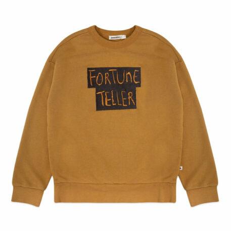 Ammehoela Sweater Rocky Fortune Teller