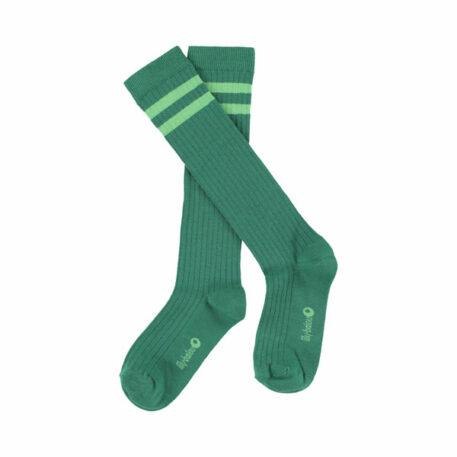 Lily Balou Jordan Knee Socks Striped Shady Glade