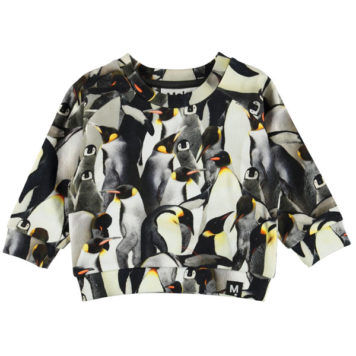 Molo Sweater Dag Penguins Galore