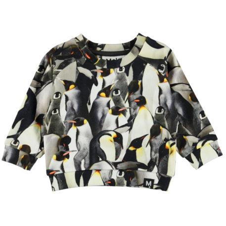 Molo Sweater Dag Penguins Galore