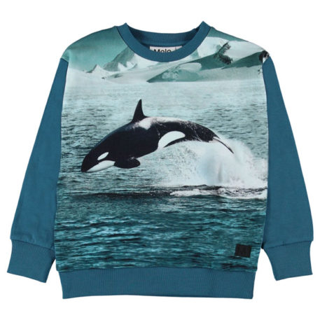 Molo Sweater Madsim Jumping Orca