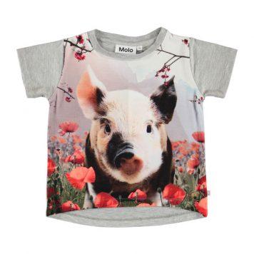 Molo T-shirt Risha Piglet