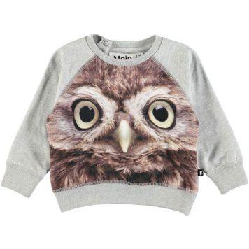 Molo longsleeve Elsa Owl Baby