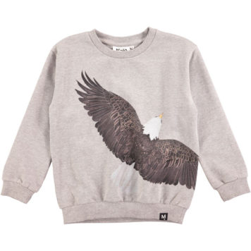 Molo sweater Marku Eagle