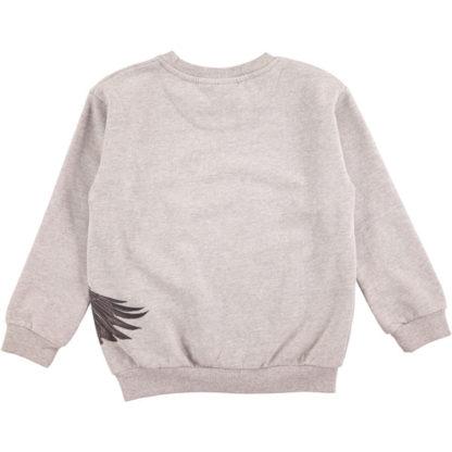 Molo sweater Marku Eagle