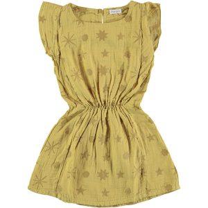 Picnik Ruffled Dress Stars