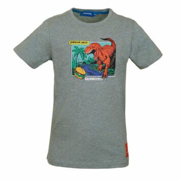 Someone T-Shirt Dinos Light Green Melange