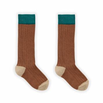 Sproet & Sprout Sock Colorblock Auburn