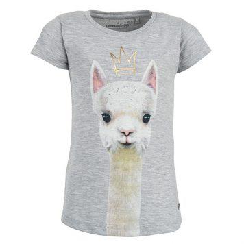 Stones&Bones T-shirt Camille Queen Lurex Grey