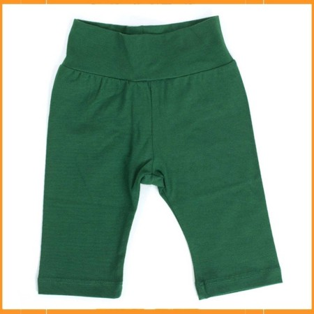 Froy & Dind pants Green