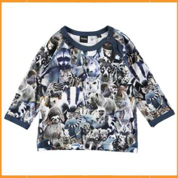 Molo Longsleeve Ewald Animal Collage
